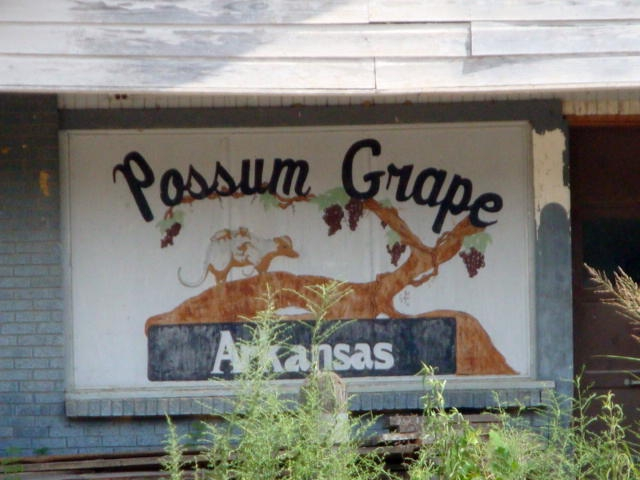 Possum Grape original art work