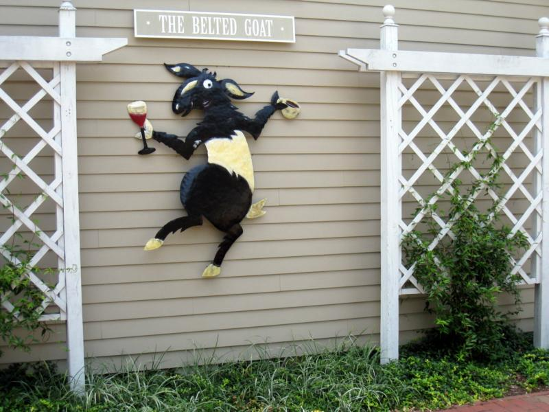 The Belted Goat