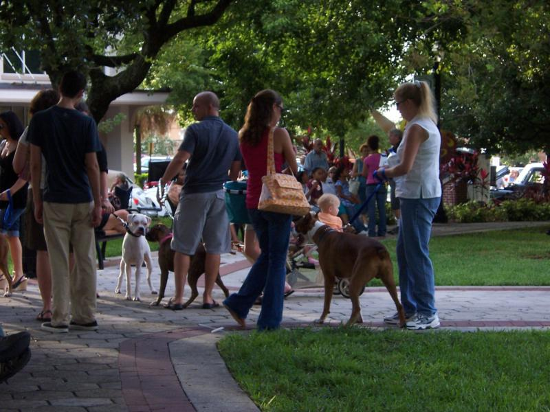 Lakeland FL First Friday - Dog Days of Summer