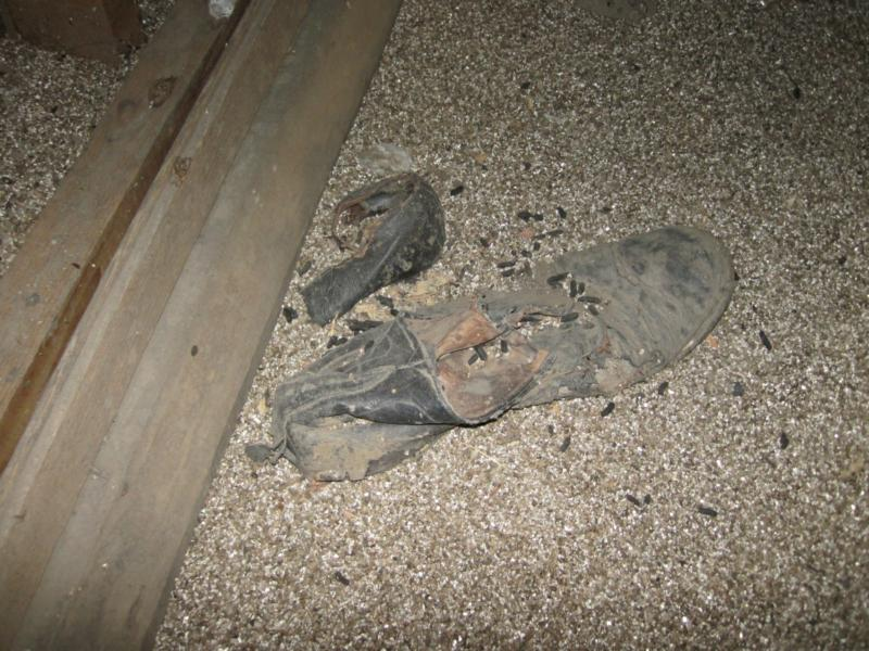 Old Shoes - Wenatchee Home Inspector