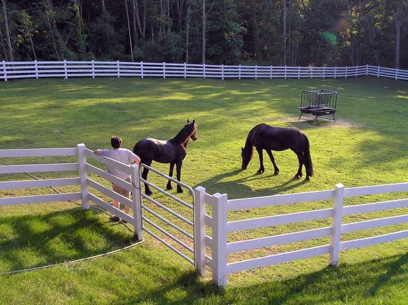 Horse Farms Equine Properties for Sale in Delaware, Pennsylvania, Maryland