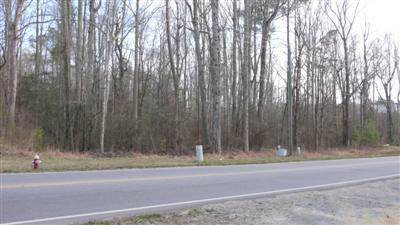 Stephenson Road Lot for Sale - Build a New Home on this Wooded Apex Lot