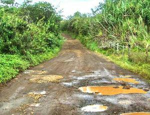 potholes in the road in Honopou Maui