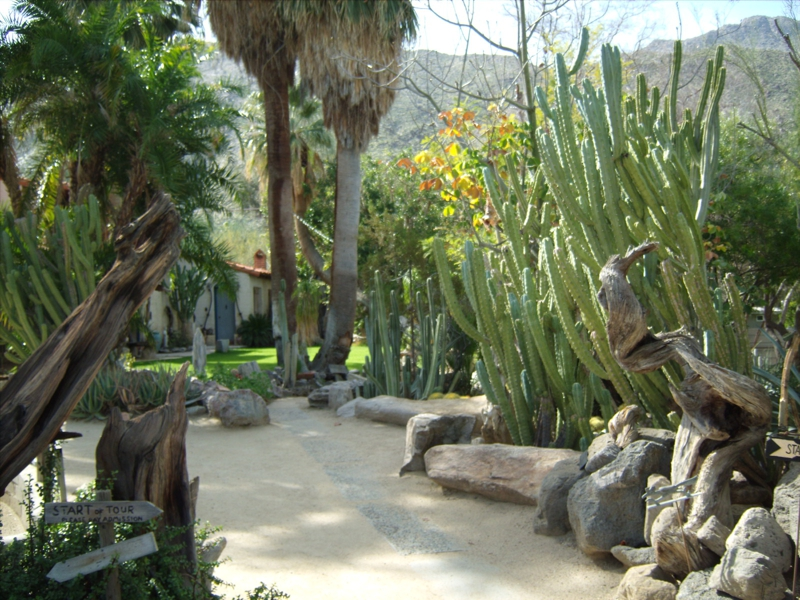 Moorten Botanical Garden In Palm Springs Ca