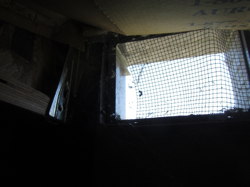 Compromised vent screen Chelan Home Inspection