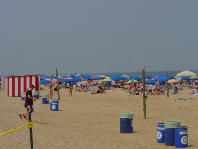 dewey beach rentals
