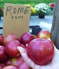 Rome Apple HomeRome 410-530-2400