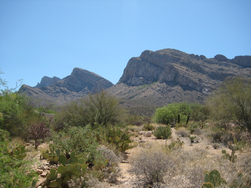 Pusch Ridge in Oro Valley near Tucson, AZ