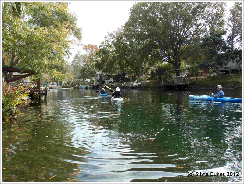 Kayaking and canoeing in hernando county for some summer fun for Fish store bayport
