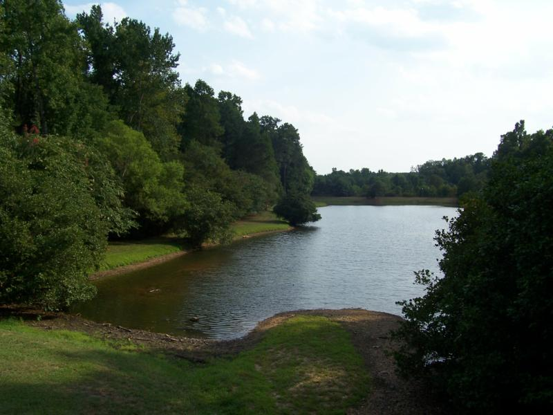 Cary, NC:  The larger of the two community ponds in Wellington Place