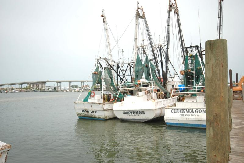 shrimp fleet and the bridge to our island