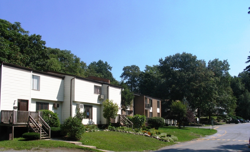 Condos TOWNHOUSES AND CONDOS FOR SALE IN HYDE PARK NY