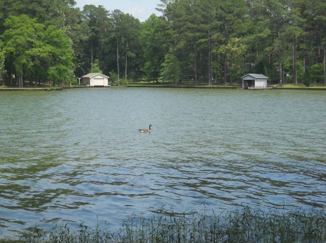 Lease Lot What Does That Mean For Lake Sinclair Property
