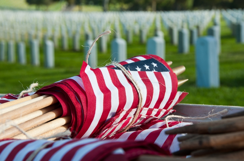Flags at Fort Rosecrans Cemetery - San Diego Veterans Day 2012