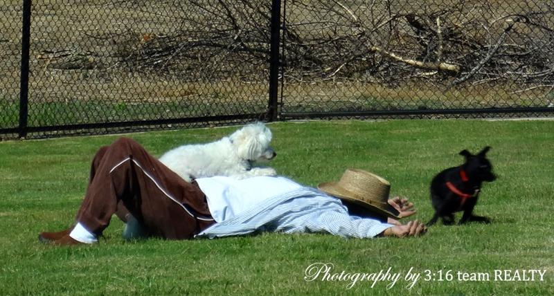 Ruff Range Dog Park