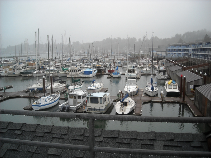 boat docks at Embarcadero, Newport, Oregon