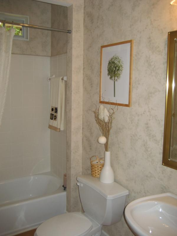 Bathroom Makeovers To Sell atlanta home staging: mirror, mirror on the wallbudget bathroom