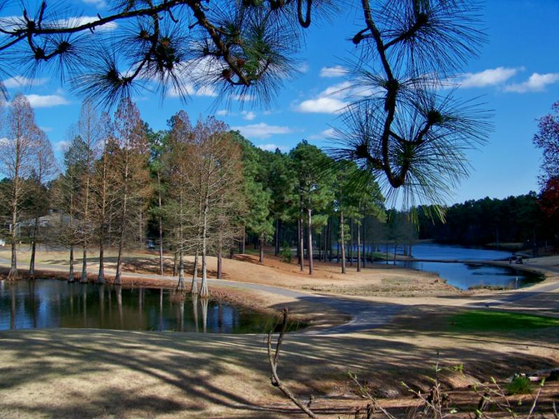 strongsville whispering pines nature