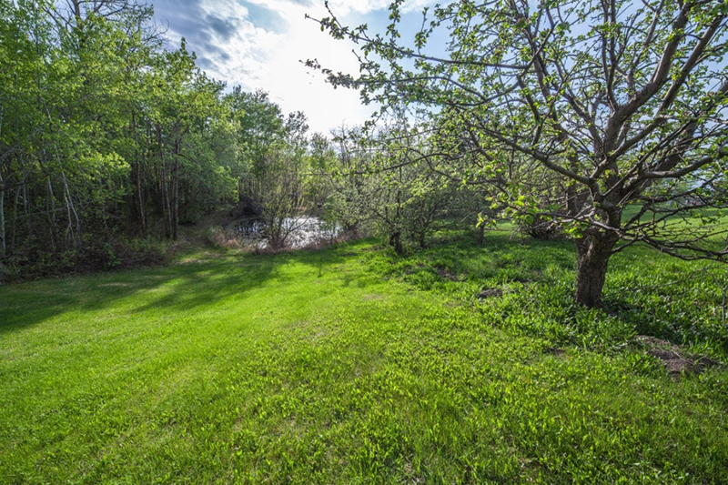 Acreage for sale in Strathcona County