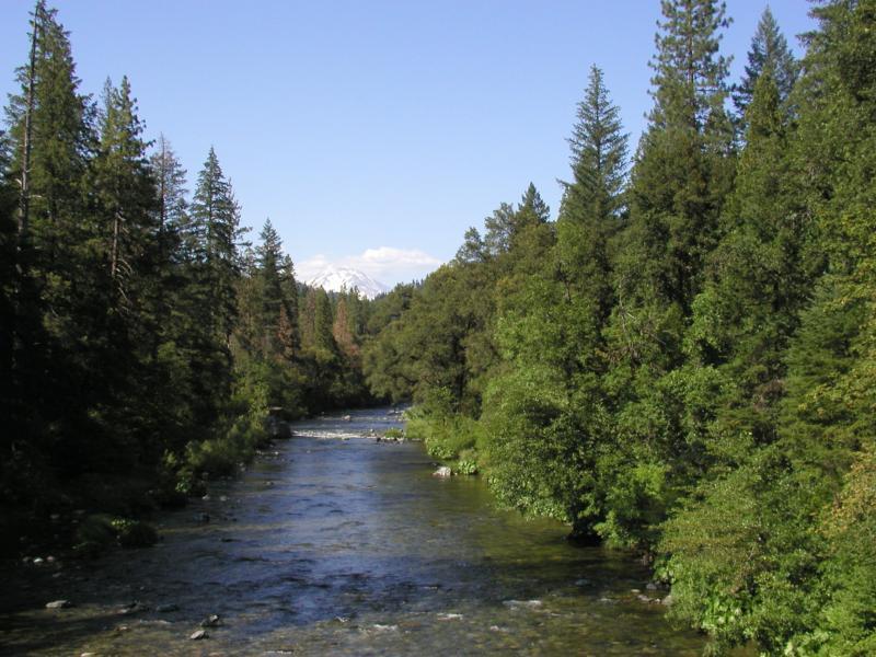 California ranch and land sacramento river fly fishing for Fishing store sacramento