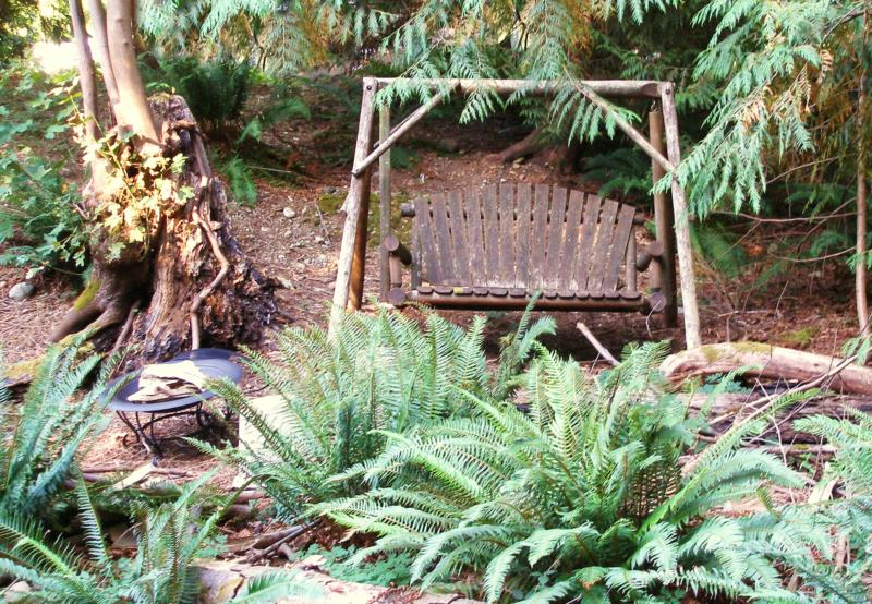 A Bench in the Woods