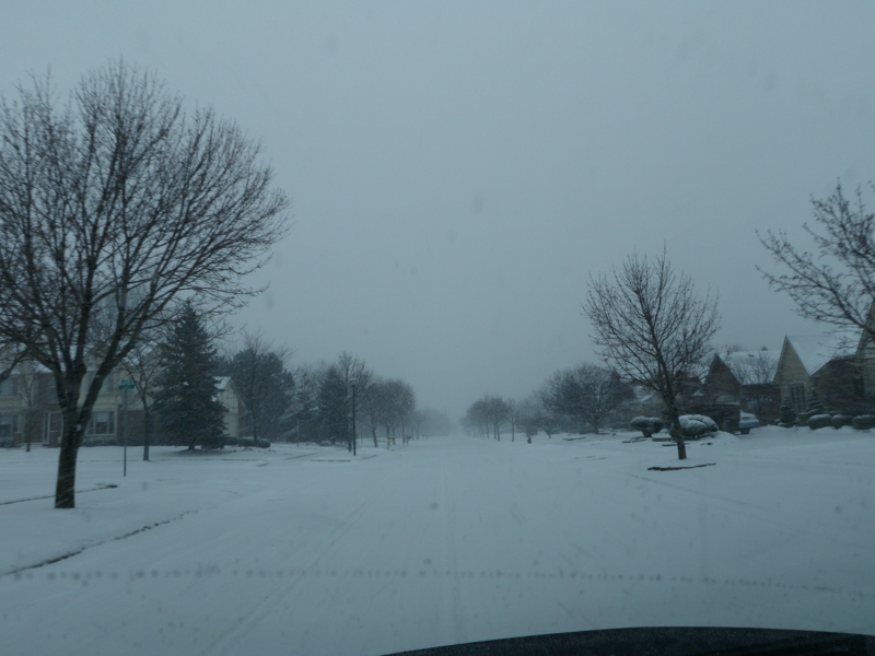 Summer Creek Livonia Michigan during snowstorm