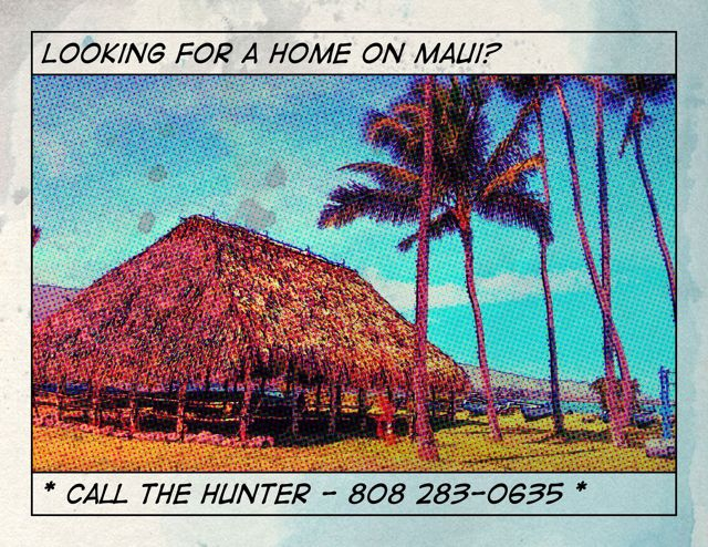 looking for a home on Maui?