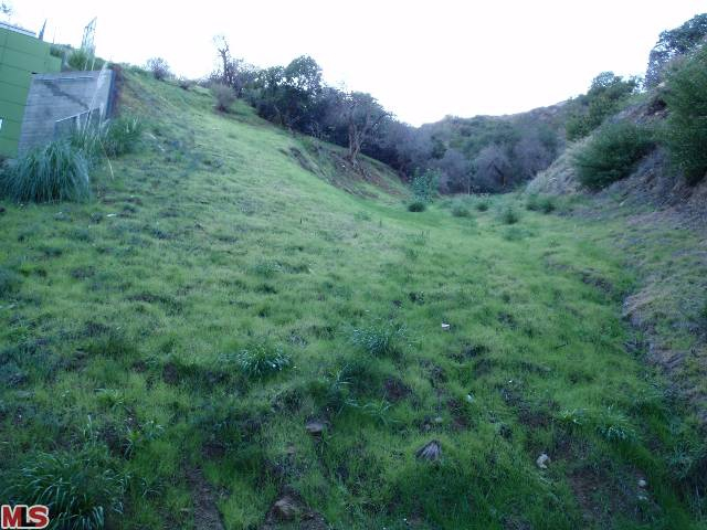 Vacant Land in Hollywood Hills Endre Barath,JR