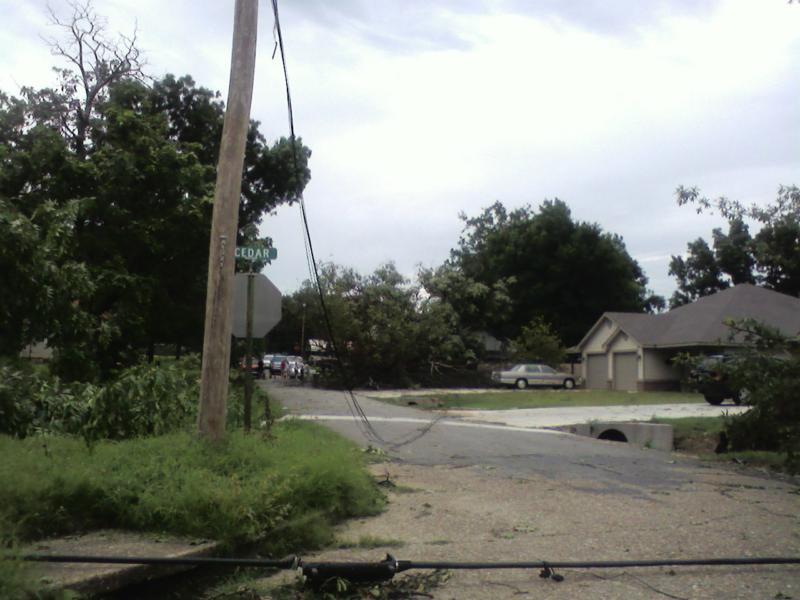 Downed trees and power lines