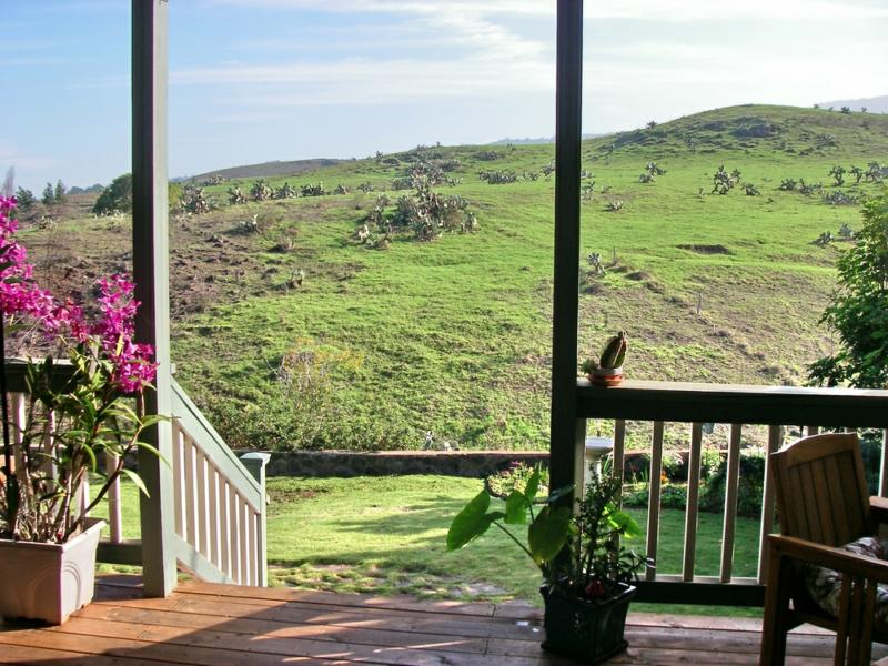 back door view - open ranch land
