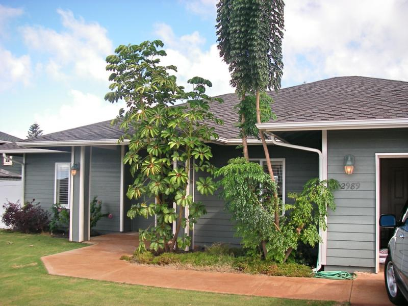 Pukalani Maui homes for sale