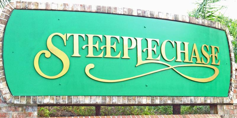 Steeplechase in Countryside, Port Orange Florida