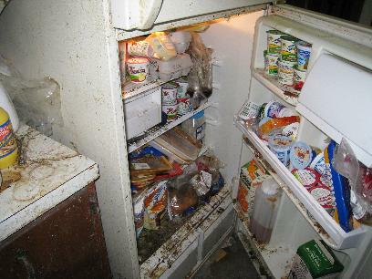 refrigerator full of rotten food