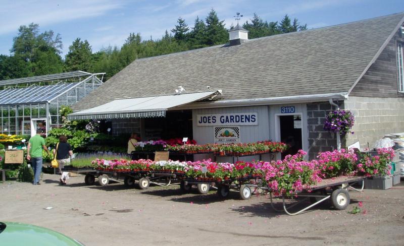 Joe 39 S Gardens Bellingham Wa
