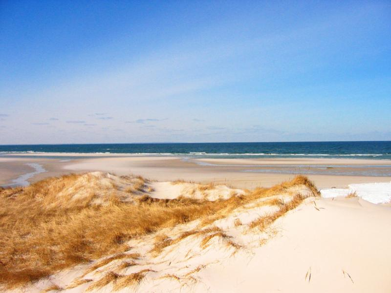 Cape Cod Bay Views Waterfront Homes For In Dennis Ma By Mayflower Beach Offer True Front