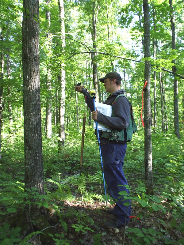 Northern Forest Inventory