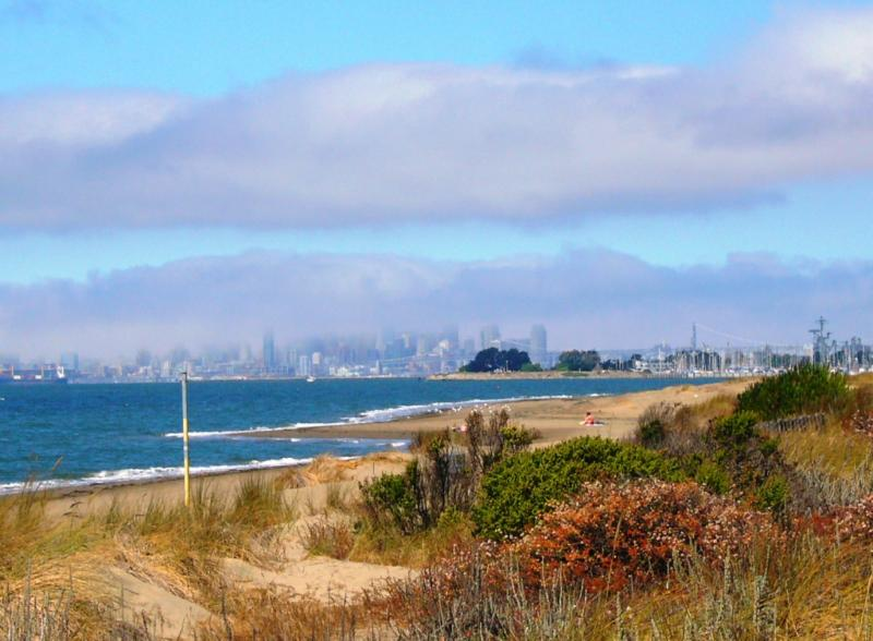 ALAMEDA CA. Moving Here? Excellent Reasons Why It's A