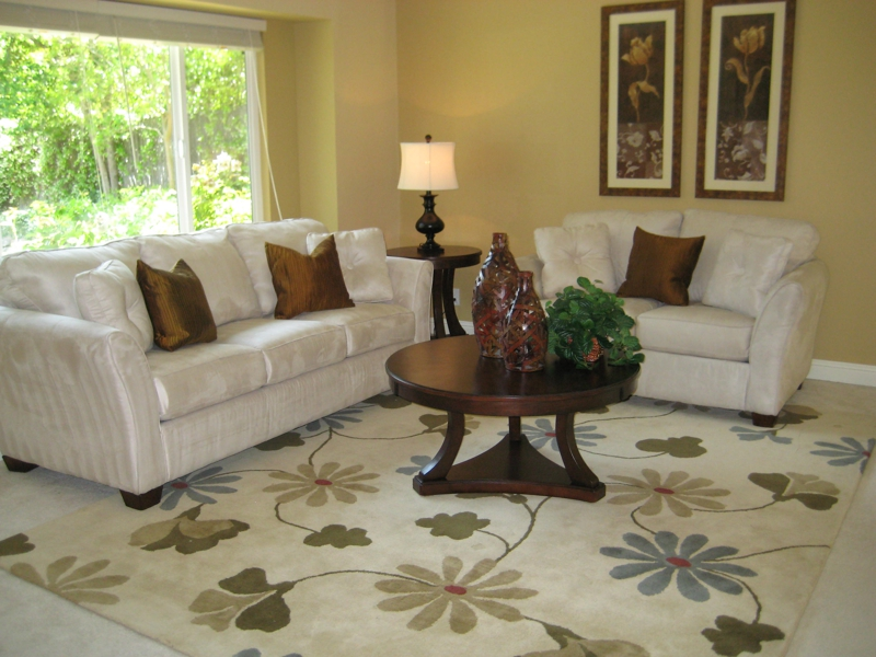 Area Rugs Will Make A Room Special While Adding Touch Of Dramal