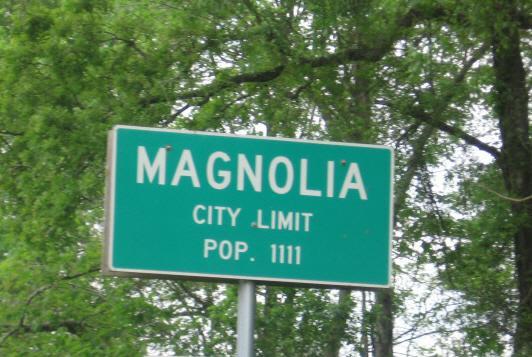 New Homes in Magnolia, TX - Cimarron Creek Preserve Proposed Community Pool
