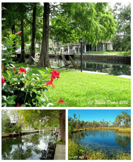 Waterfront Homes for Sale in Weeki Wachee Florida by Silvia Dukes