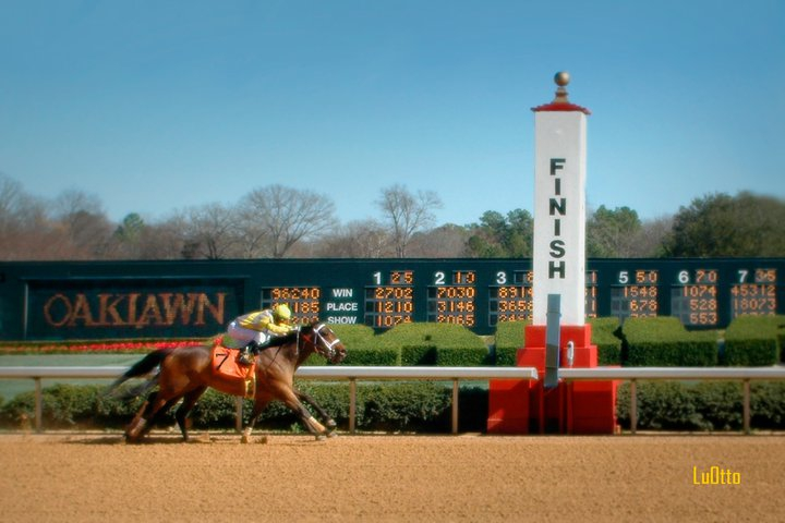 Hot Springs Oaklawn Horse Racing Park