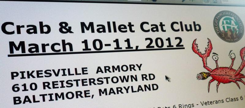 Pikesville Cat Show Cake
