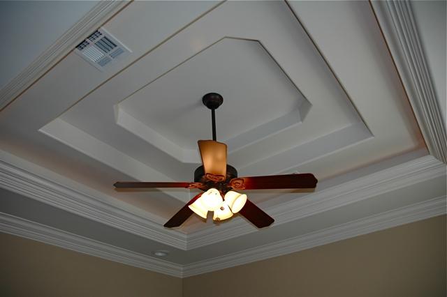 305 Forest Creek in Scott Louisiana, tripple trey ceiling