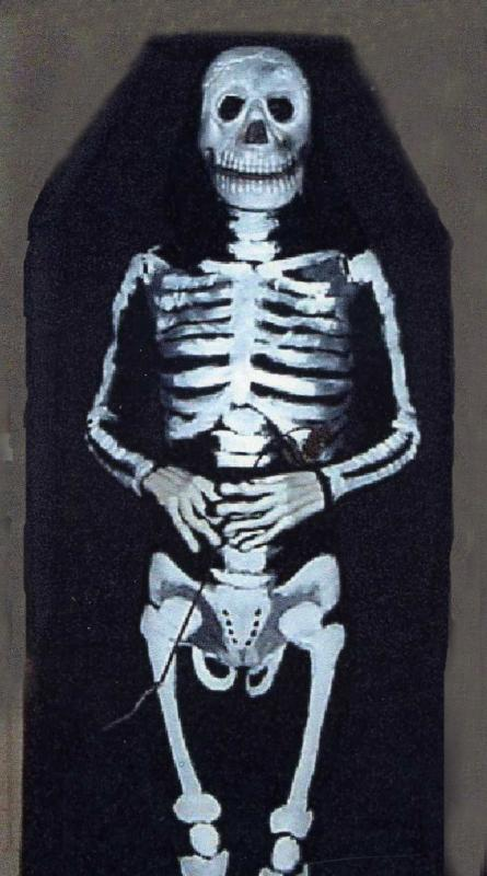 skeleton in a coffin costume