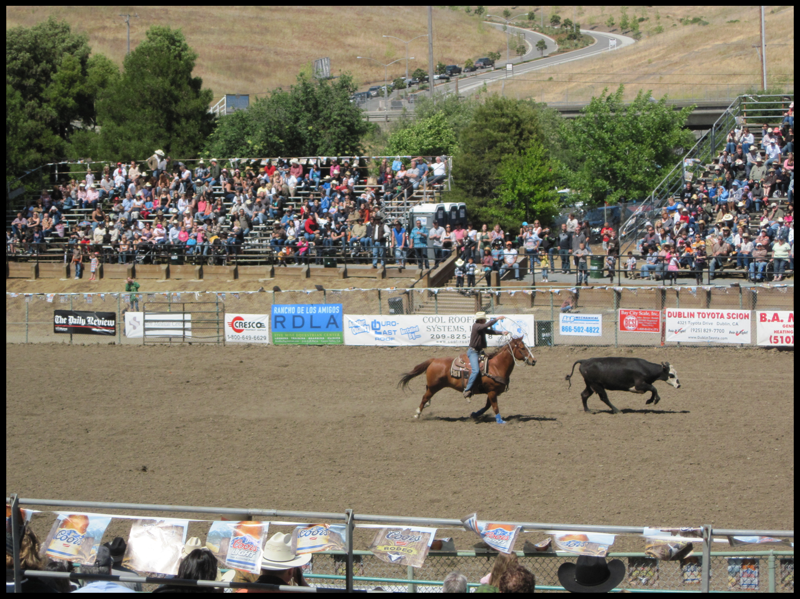 Rowell Ranch Rodeo Always In May Hayward Ca