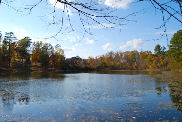Riverwood Plantation Pond