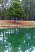 Luna Lake, Robins AFB - Courtesy of your Robins AFB Real Estate Specialist