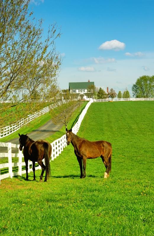Horse And Gentleman Farms Equine Properties Sale Delaware Pennsylvania