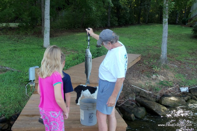 Lake Oconee Fishing with Grandchildren