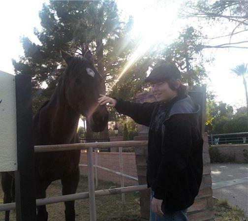 Arcadia Arizona Horse Property